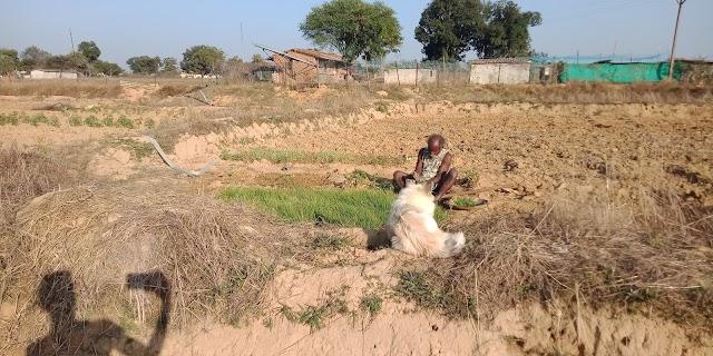 वर्तमान (2020) में भारतीय कृषकों की दशा