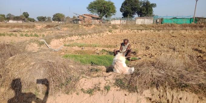 वर्तमान (2021) में भारतीय कृषकों की दशा