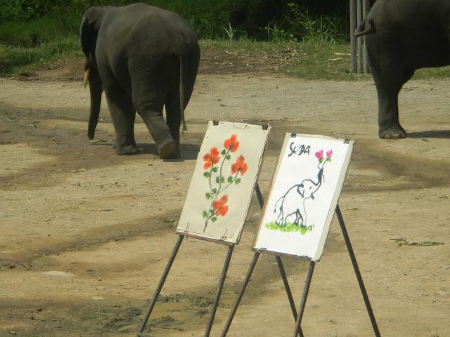 Pintura - Mae Taeng Elephant Park - Parque de Elefantes na Tailândia