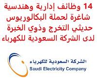 14 وظائف إدارية وهندسية شاغرة لحملة البكالوريوس حديثي التخرج وذوي الخبرة لدى الشركة السعودية للكهرباء تعلن الشركة السعودية للكهرباء, عن توفر 14 وظائف إدارية وهندسية شاغرة لحملة البكالوريوس حديثي التخرج وذوي الخبرة, للعمل لديها في الرياض والمناطق الوسطى، الشرقية، القصيم، الجنوبية وذلك للوظائف التالية: 1- محقق قانوني - أبها (Legal Investigator) المؤهل العلمي: بكالوريوس أو ماجستير في التخصصات القانونية الخبرة: عشر سنوات على الأقل من العمل في المجال لحملة البكالوريوس, أو سبع سنوات لحملة الماجستير 2- مستشار قانوني - الرياض (Legal Advisor) المؤهل العلمي: بكالوريوس أو ماجستير في التخصصات القانونية الخبرة: خمس سنوات على الأقل من العمل في المجال لحملة البكالوريوس, أو ثلاث سنوات لحملة الماجستير 3- مهندس اتصالات - الرياض (Telecom Engineer) المؤهل العلمي: بكالوريوس هندسة اتصالات الخبرة: سنة واحدة على الأقل من العمل في المجال 4- محلل تخطيط وميزانية - الرياض (Planning & Budgeting Analyst) المؤهل العلمي: بكالوريوس نظم معلومات إدارية أو ما يعادلها الخبرة: غير مشترطة 5- كيميائي - المنطقة الشرقية (Chemist) المتطلبات: بكالوريوس تخصص (الكيمياء أو الهندسة الكيميائية) الخبرة: ثلاث سنوات على الأقل من العمل في مجال مشابه 6- كيميائي - المنطقة الوسطى  (Chemist) المؤهل العلمي: بكالوريوس تخصص في الكيمياء أو الهندسة الكيميائية الخبرة: غير مشترطة, أو بخبرة لا تزيد عن السنتين 7- كيميائي - محطة القصيم المركزية (Chemist) المؤهل العلمي: بكالوريوس تخصص في الكيمياء أو الهندسة الكيميائية الخبرة: ثلاث سنوات على الأقل من العمل في مجال مشابه 8- مهندس نقل - المنطقة الوسطى (Transmission Engineer) المؤهل العلمي: بكالوريوس هندسة كهربائية أو ما يعادلها الخبرة: ثلاث سنوات على الأقل من العمل في مجال مشابه 9- مهندس نقل - المنطقة الوسطى (Transmission Engineer) المؤهل العلمي: بكالوريوس هندسة كهربائية أو ما يعادلها الخبرة: غير مشترطة 10- محلل محاسبة - الرياض (Accounting Analyst) المؤهل العلمي: بكالوريوس محاسبة أو ما يعادلها الخبرة: غير مشترطة 11- أخصائي إدارة مخاطر المؤسسات - الرياض (ERM Specialist) المؤهل العلمي: بكالوريوس أو ماجستير إدارة مخاطر أو ما يعادلها الخبرة: سبع سنوات على الأقل من العمل في إدارة المخاطر 12