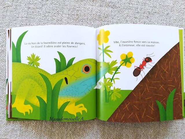 || Les p'tites fourmis - La vie dans la fourmilière (Présentation & Avis)(Chut, les enfants lisent # 112)