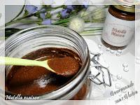 http://gourmandesansgluten.blogspot.fr/2017/11/pate-tartiner-nutella-maison.html
