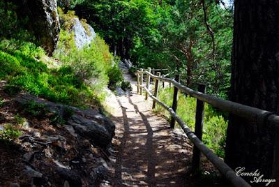 Camino de bajada, por senda de piedra y baranda de troncos. El recorrido para visitar la Laguna es en forma de U y todo por pasarelas dispuestas para ello.