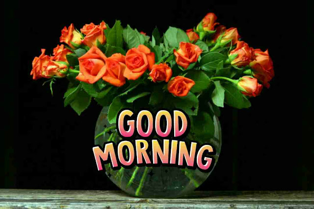 Beautiful good morning photo with rose flowes bouquet