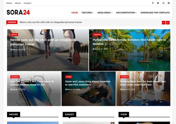 Sora 24 Blogger Template  - Download The Premium Looking Blogger Template 2021