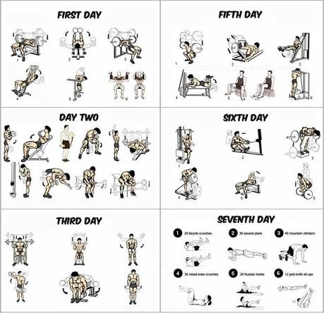 3 day workout for beginners