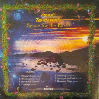 Ozric Tentacles - Space For The Earth