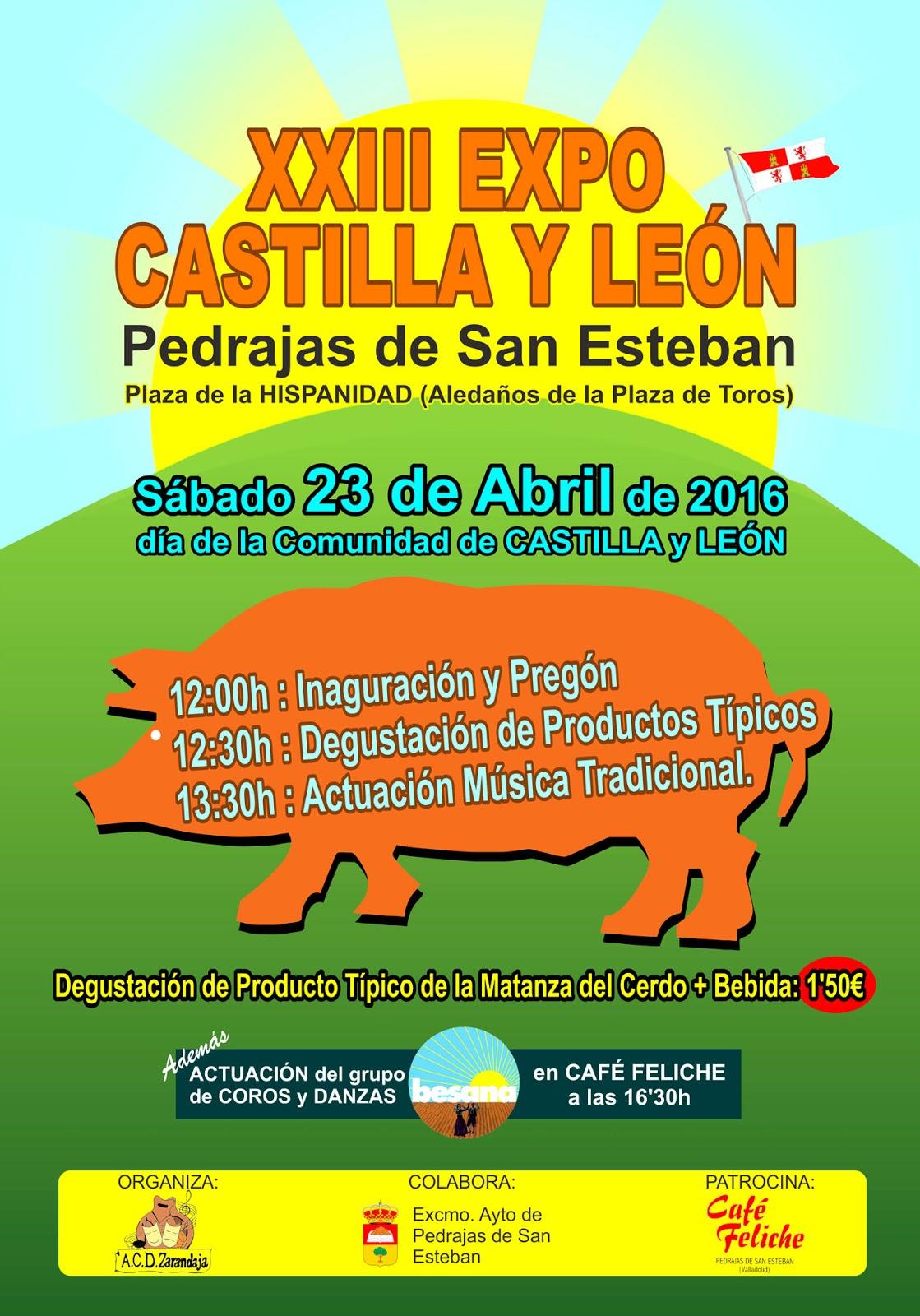 Turismo pedrajas expo castilla y le n for Oficina de turismo de castilla y leon