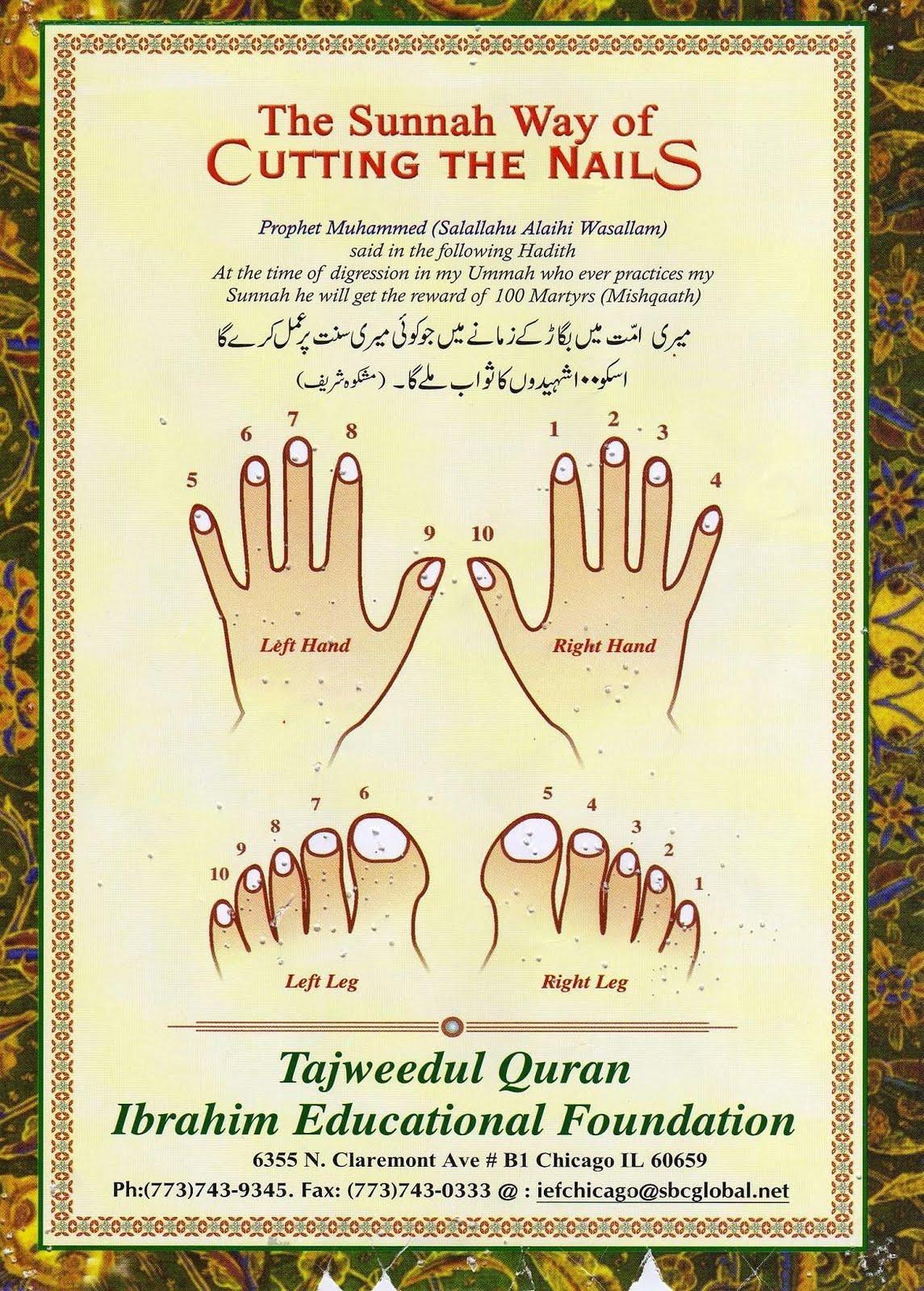 ISLAMIC BLOG: The Sunnah Way of Cutting the Nails