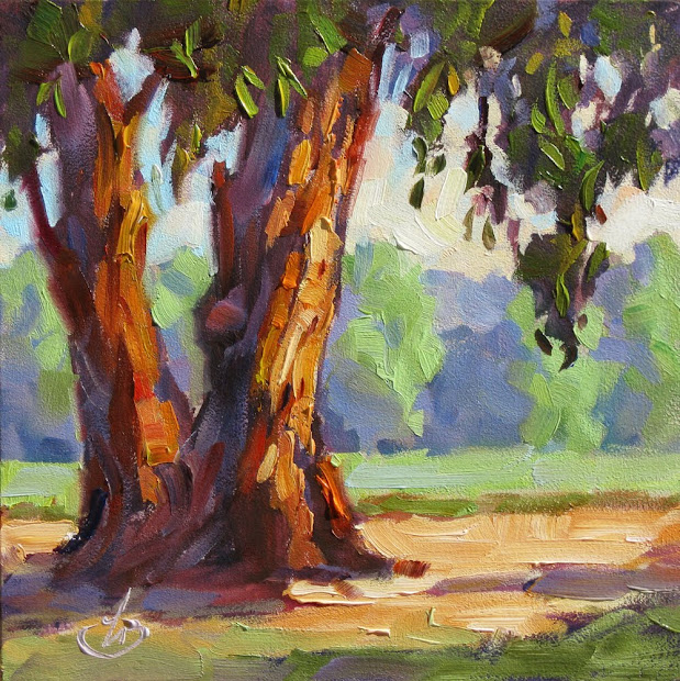Tom Brown Fine Art Eucalyptus Trees Farm California