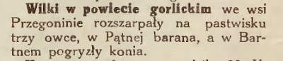 Wilki w gorlickim 1932
