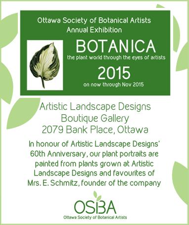 Artistic Landscape Design Ottawa