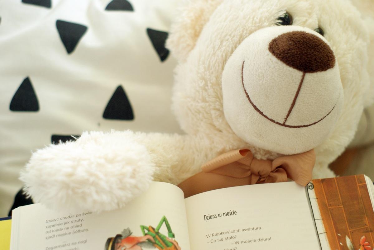 Listopadowe Propozycje Książek Dla Dzieci Wanda Chotomska