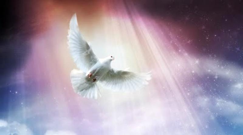 O Espírito Santo desceu em forma de pomba sobre Jesus