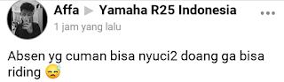 Melihat Kejanggalan dari Yamaha R25 Yang Satu Ini