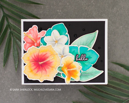 Honey Bee Stamps Summer Release 2020 | Handmade Cards created by Sara Sherlock, featuring Honey Bee Stamps Birds of Paradise, Tropical Tweets, and Paradise Blooms Stamp and Honey Cut Die sets.  Tropical themed cards, with exotic birds and flowers.