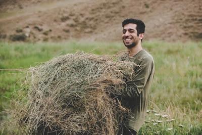 turismo agrícola y agroturismo