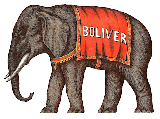 elephant circus image antique illustration