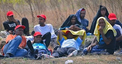 A német Bundestag elnöke szerint nem szabad erőltetni a menedékkérők elosztását