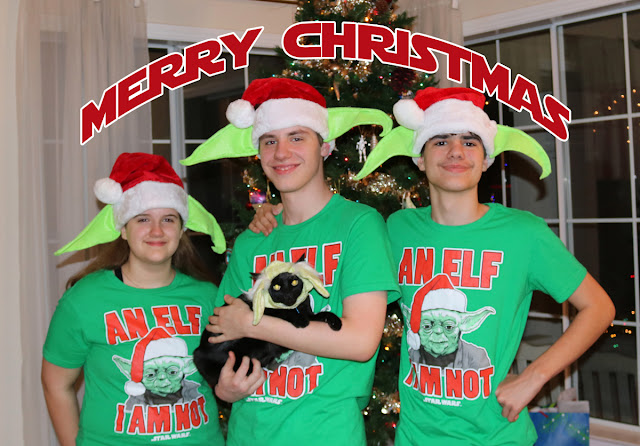 Star Wars Mom's Kids wishing you a Star Wars Merry Christmas via DIY Yoda Santa Hats