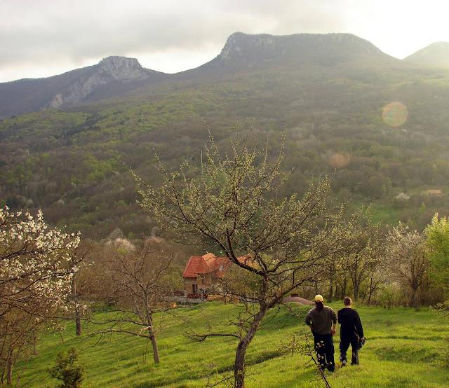 Вид сверху на село Многоречье
