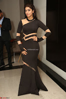 Pranitha Subhash in a skin tight backless brown gown at 64th Jio Filmfare Awards South ~  Exclusive 166.JPG