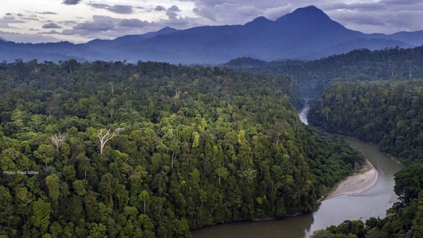 taman nasional gunung lauser