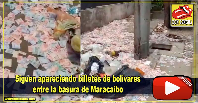 Siguen apareciendo billetes de bolívares entre la basura de Maracaibo