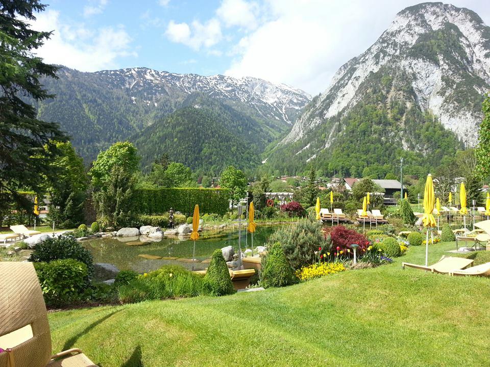 alpenrose achensee