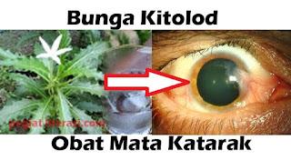 obat mata katarak