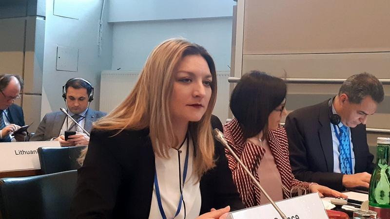 Παρέμβαση της Νατάσας Γκαρά στον ΟΑΣΕ για τη διαχείριση του προσφυγικού