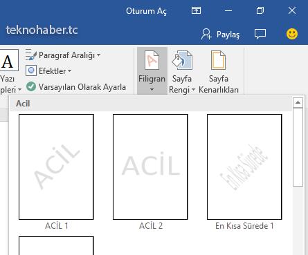 temel filigran ve formatları