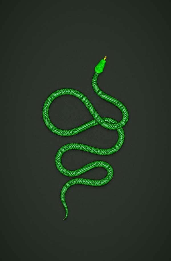 Create a Detailed Snake Pattern Brush in Adobe Illustrator