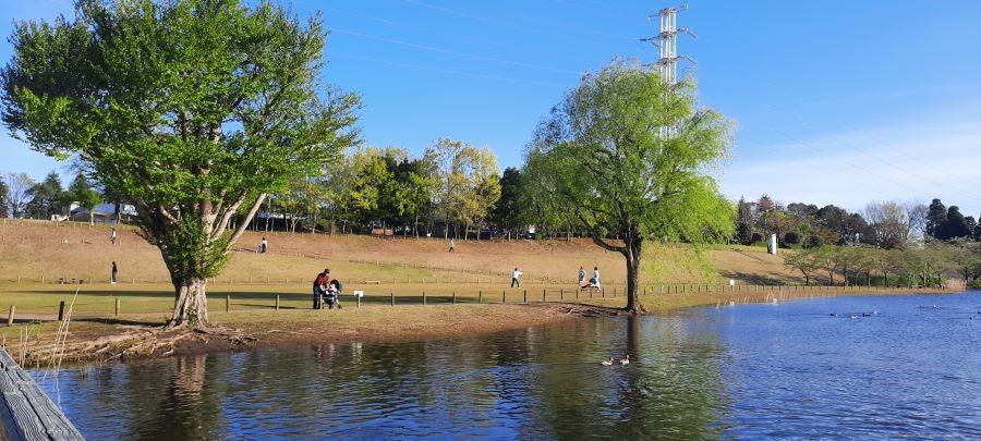 Science Expo Memorial Park, Taman Luas di Selatan Tsukuba