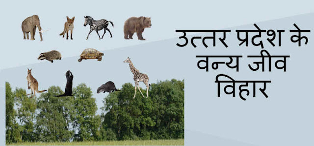 Uttar Pradesh Ke Vanya Jeev Vihar