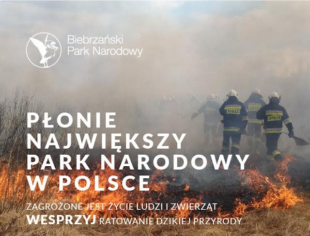 pożar w Biebrzańskim PN