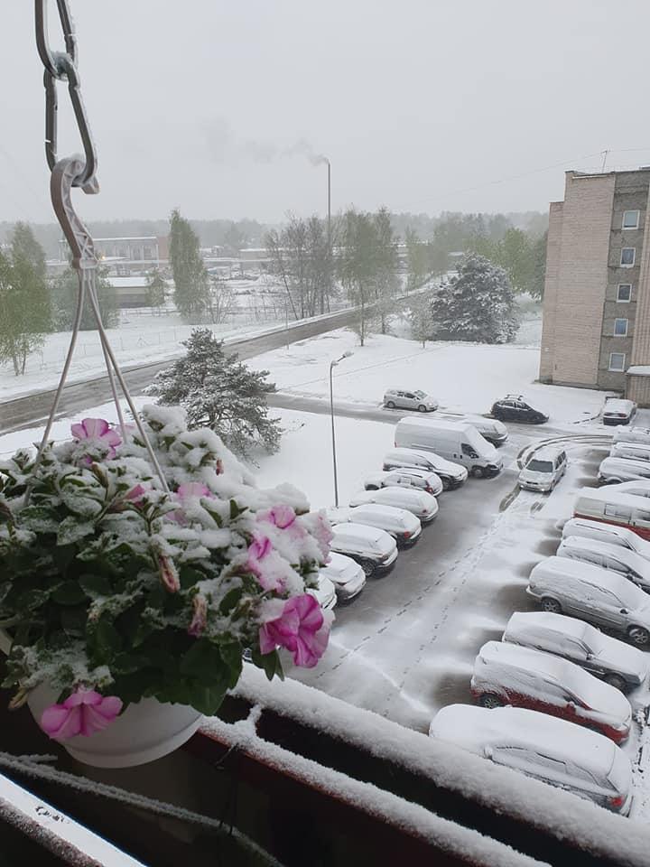 Sniegs klāj dzīvojamo māju iekšpagalmu
