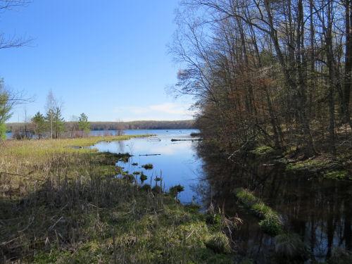Hodenpyl Dam Pond