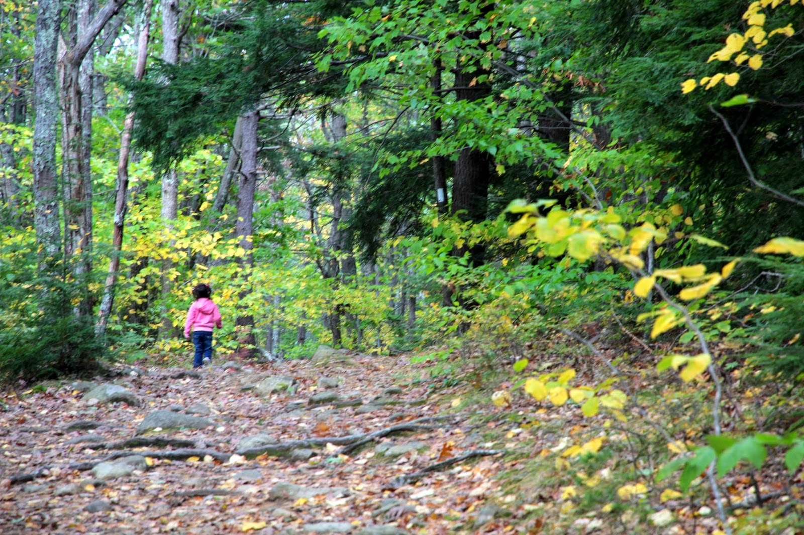 day hiking trails great activity for day hiking kids color find. Black Bedroom Furniture Sets. Home Design Ideas