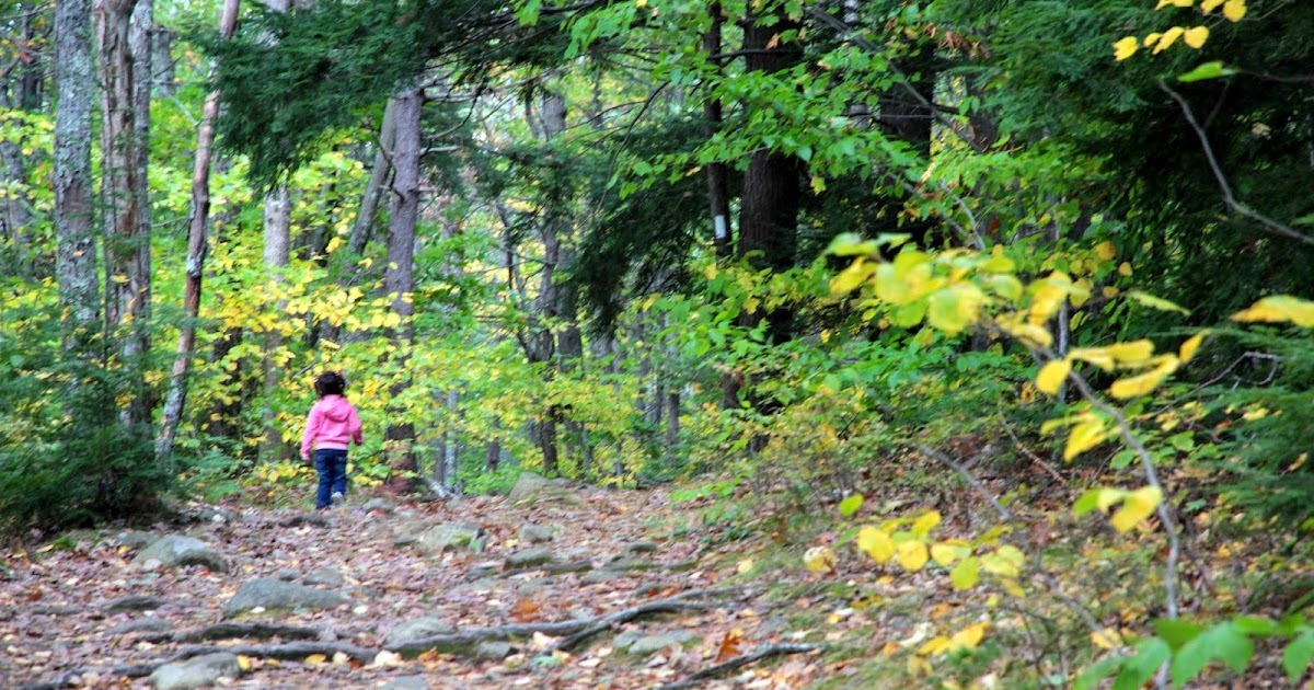 Day Hiking Trails: Great activity for day hiking kids: Color Find