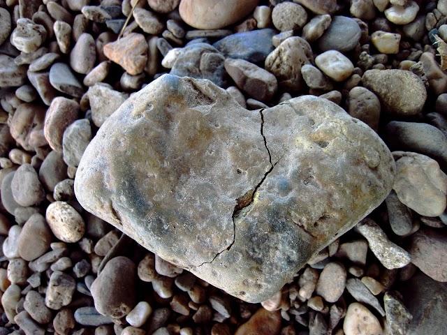O mais contraditório do ser humano vem à tona: seu ódio e amor ao outro!