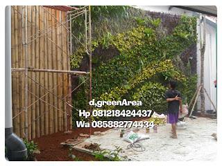 Jasa pembuatan vertical garden murah taman dinding