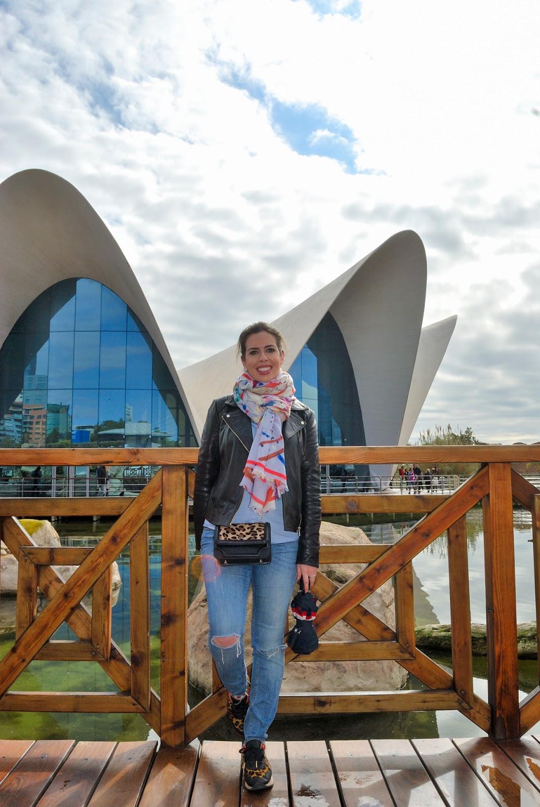 oceanografic valencia ciudad de las artes y las ciencias