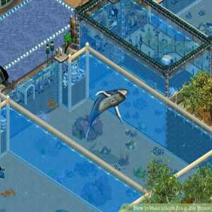 Zoo Tycoon Game Download At PC Full Version Free
