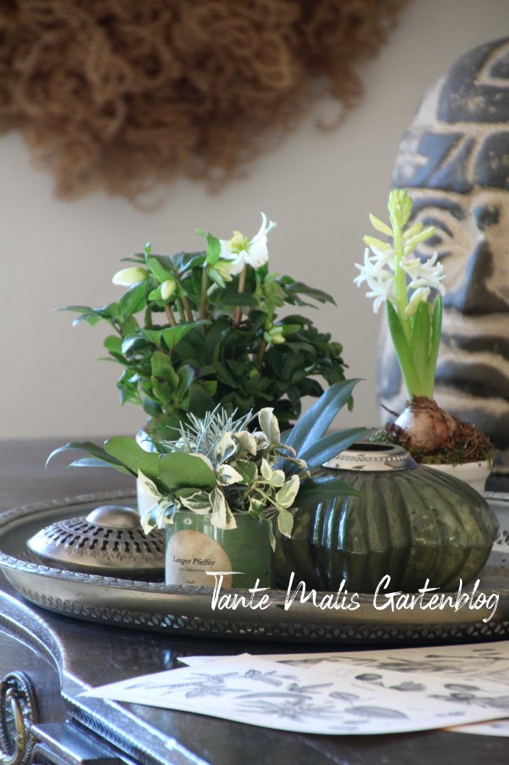 Winterdeko mit Gartenblumen auf Schreibtisch