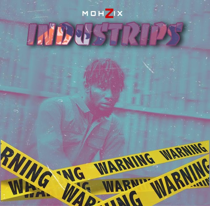 Review: Mohzix - Industrips