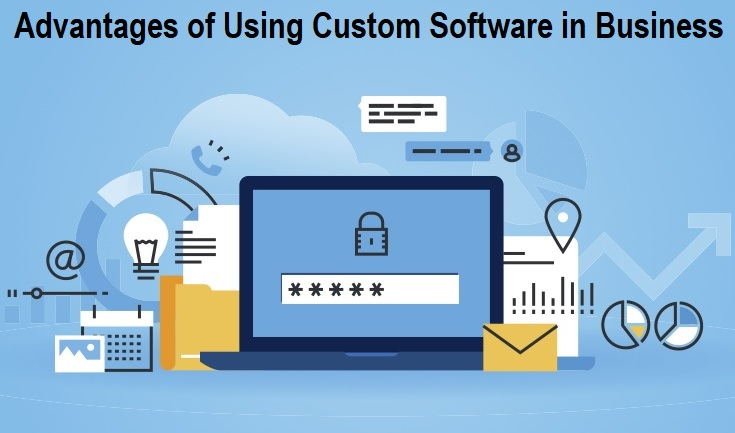 Advantages of Using Custom Software in Business