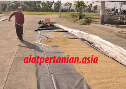 solar dryer indonesia