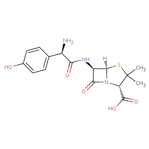 Struktur Kimia Amoxicillin (Amoksisilin)