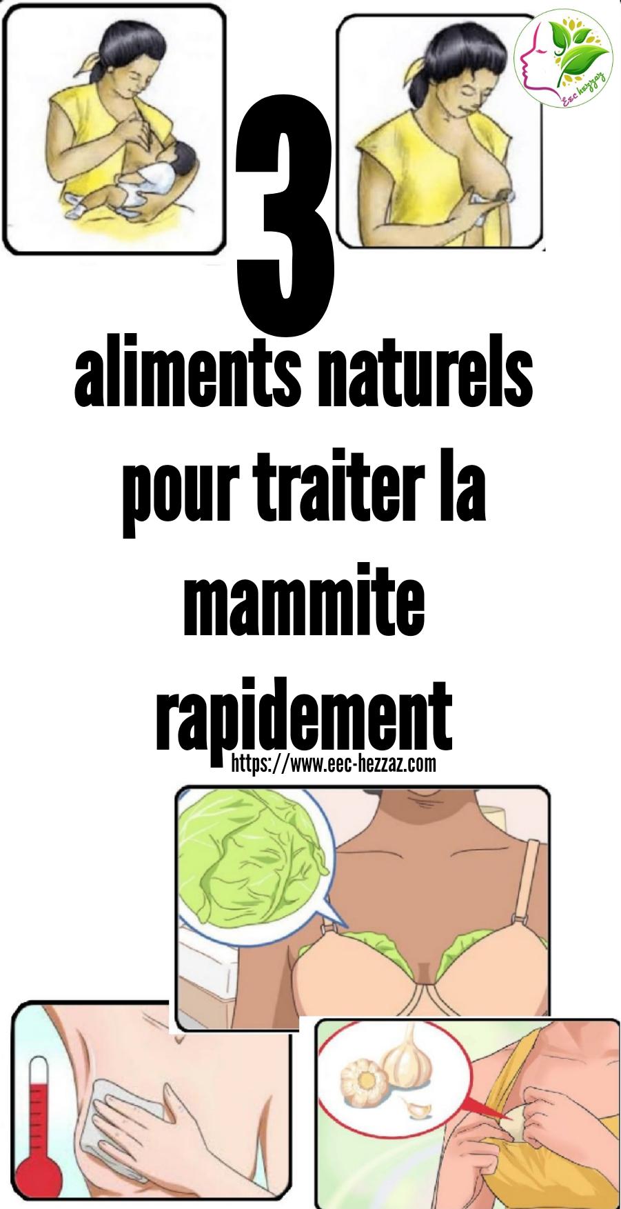 3 aliments naturels pour traiter la mammite rapidement